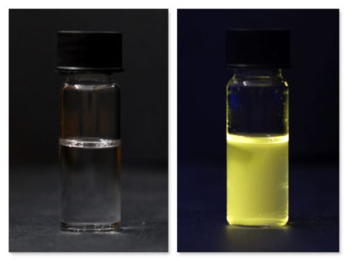 yellow colloidal zinc oxide quantum dots