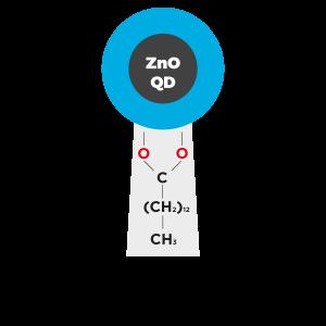 zno quantum dots zinc oxide quantum dots